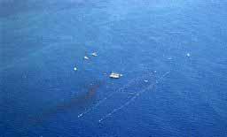 pollution de la mer méditérané